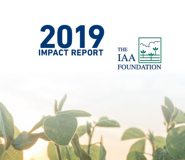 IAA Foundation Annual Impact